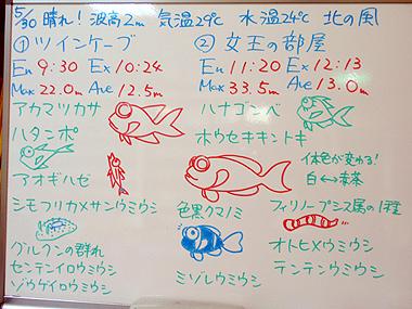 宮古島 ログデータ 2009/5/30