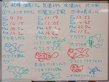 宮古島 ログデータ 2009/5/31