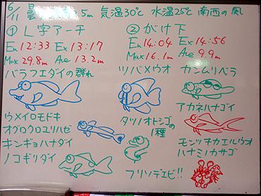 宮古島 ログデータ 2009/6/11