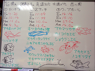 宮古島 ログデータ 2009/6/20