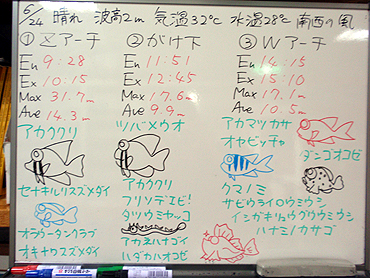 宮古島 ログデータ 2009/6/25