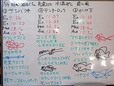 宮古島 ログデータ 2009/6/29