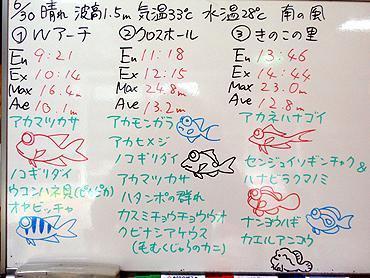 宮古島 ログデータ 2009/6/30