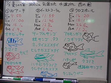 宮古島 ログデータ 2009/7/3
