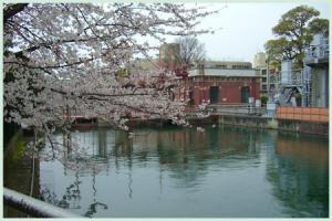 biwakososui.okazaki2007.jpg