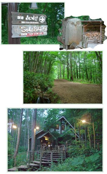 furano.morinotokei2007.6.jpg
