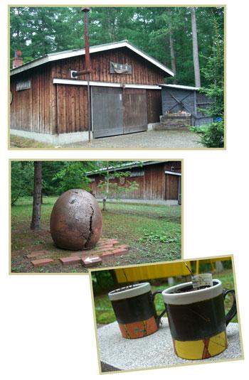 kaikuugama2007.6.jpg