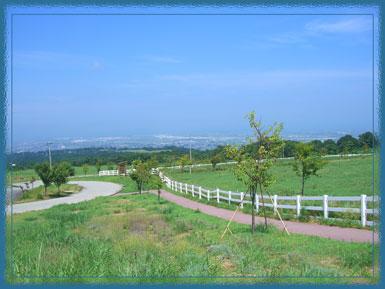 mikawakisei2006.jpg