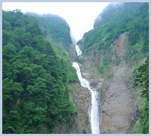 syoumyou2007.8-2.jpg