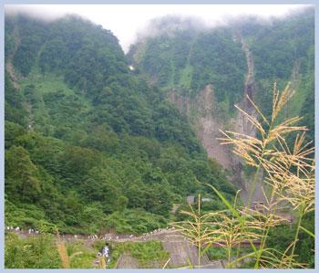 syoumyou2007.8-4.jpg