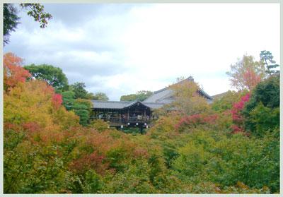 toufukuzi2006.jpg
