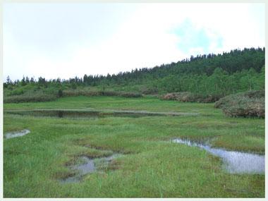 tugaike2006.jpg