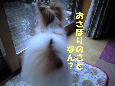 ku26_380ぺ2