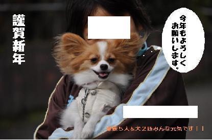 DSC_0102_convert_20091225162351年賀ぺ