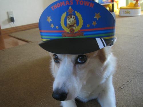 たっくんのお帽子でしょ??