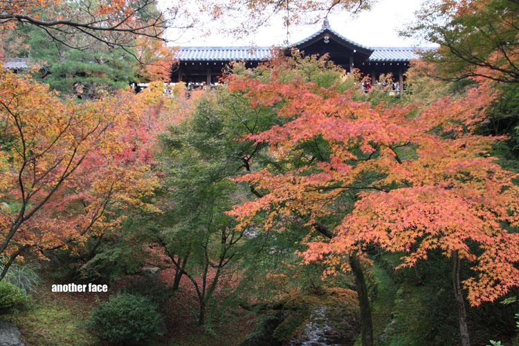 1122-東福寺 035