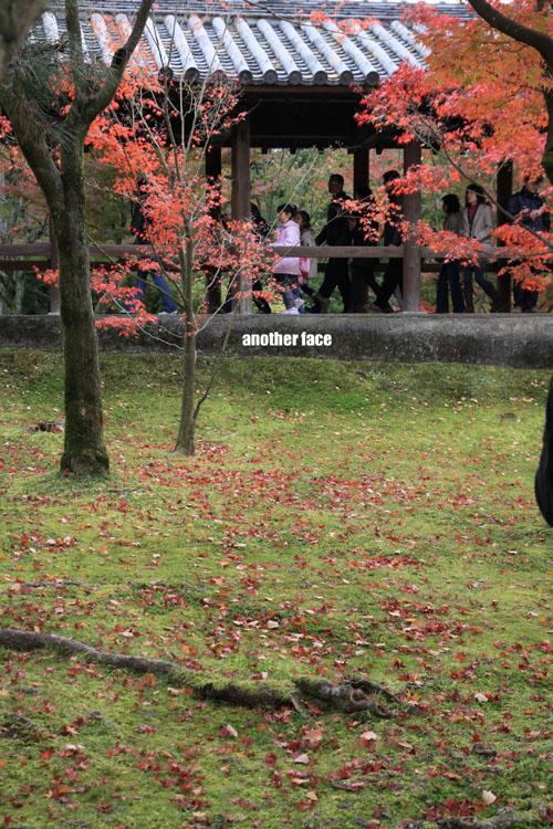1122-東福寺 026