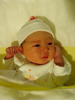 誕生から1時間後の小春姫