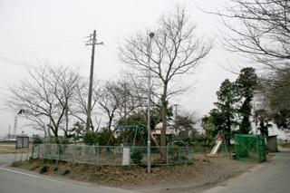 080308-5.jpg