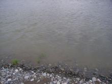 20080419-2