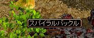 20070320151345.jpg