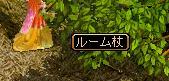 20070320151510.jpg