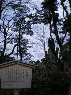 takaoka47.jpg