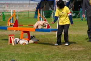 2009-4-18.19JKC泉大津 065