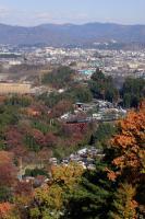 20081123-07.jpg