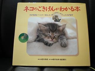 ネコのごきげんがわかる本