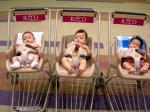 赤ちゃん3人衆