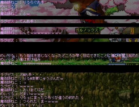 Maple0354.jpg