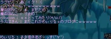 Maple0456.jpg