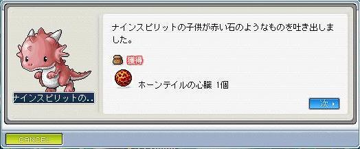 Maple0769.jpg