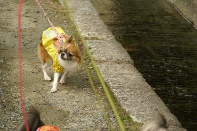 2008,10京都♪ (51)