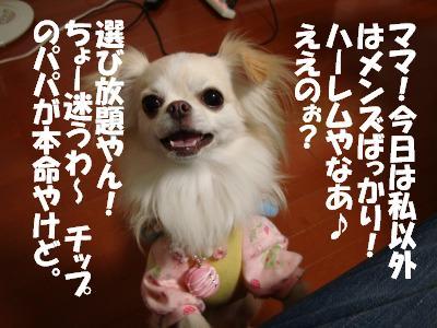 2008,10あっちゃんち (21)