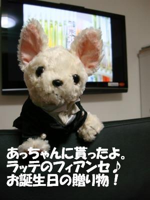 2008,10あっちゃんち (44)
