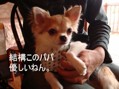 2008,10あっちゃんち (58)