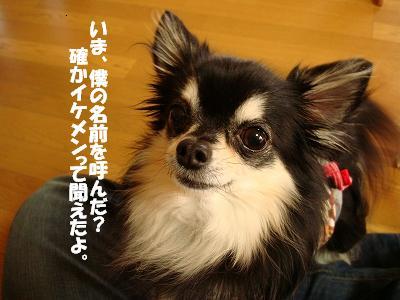 まりちゃんち (52)