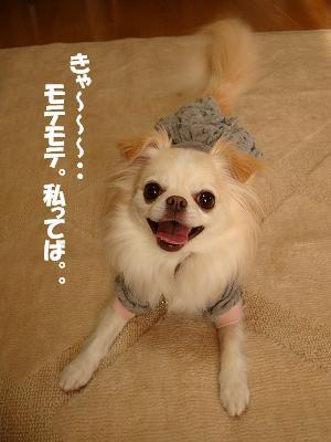 まりちゃんち (55)
