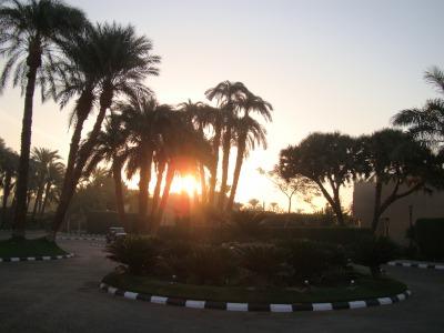 エジプト1 (64)