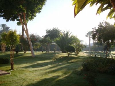 エジプト1 (8)