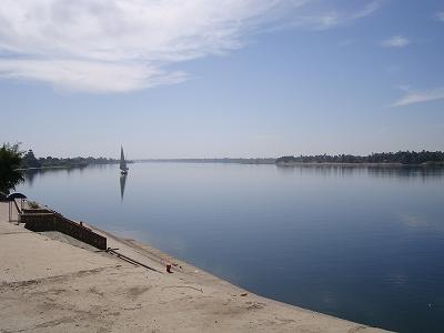 2008エジプト (83)