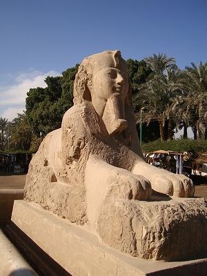 2008エジプト (182)