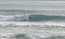 20080419-1.jpg