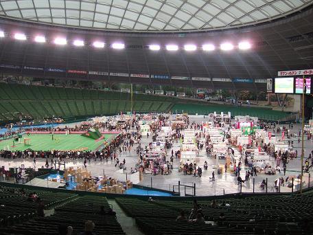20091114-1.jpg