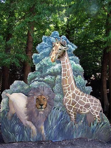 キリンとライオン