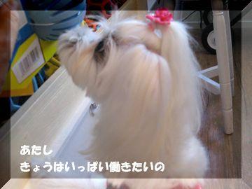 11.6②