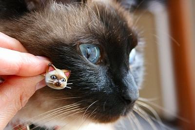 メロとニャンコ指輪♪