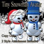Tiny_Snowman-512.jpg